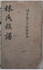 林氏入川族谱